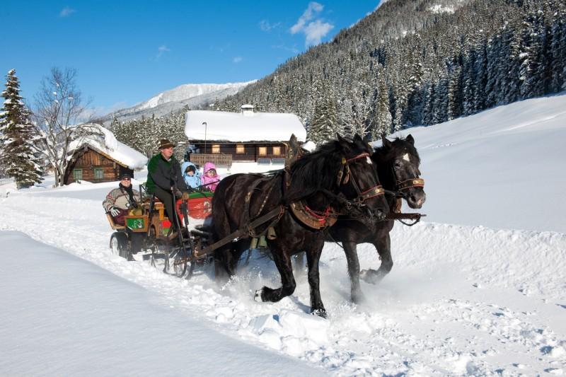 winter-pferdeschlitten.jpg